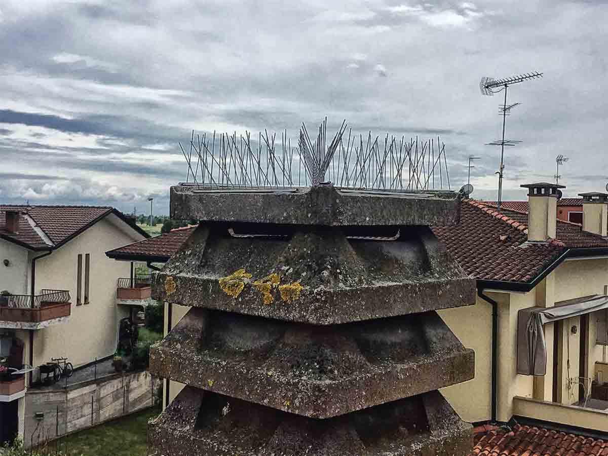 Euroclean » Perché installare i dissuasori per piccioni?